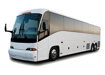 53 seater
